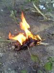 弓切りでついた火